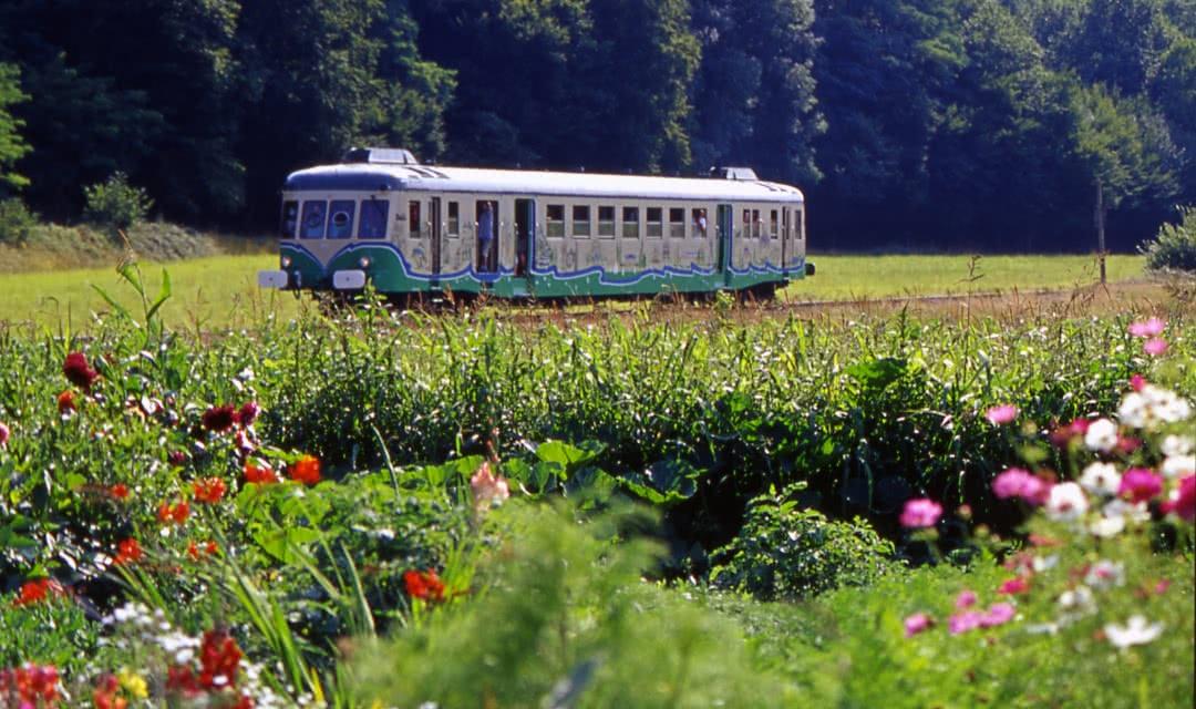 Train touristique de la Vallée du Loir ©CDT 41 - dsourice