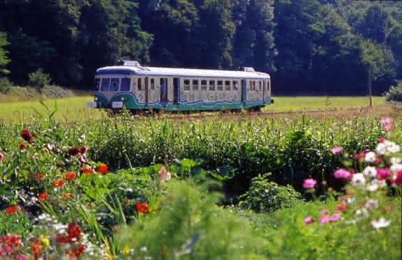 Train Touristique de la Vallée du Loir ©CDT41-dsourice