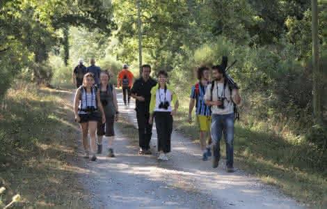 Sortie nature avec Sologne Nature Environnement - Val de Loire Loir-et-Cher Tourisme ©CDT41-MirPhoto