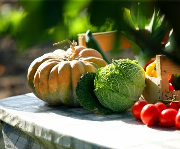 légumes ©CDT41 - phovoir - image