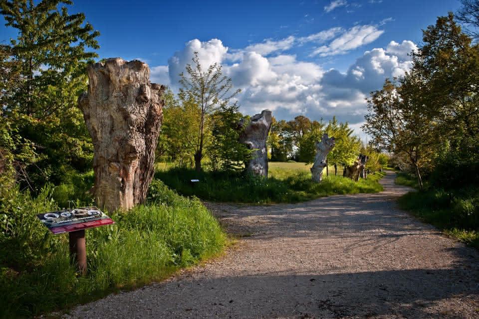 Maison Botanique de Boursay