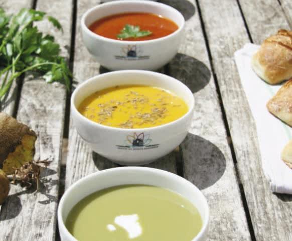 fête de la soupe jardin Plessis Sasnières