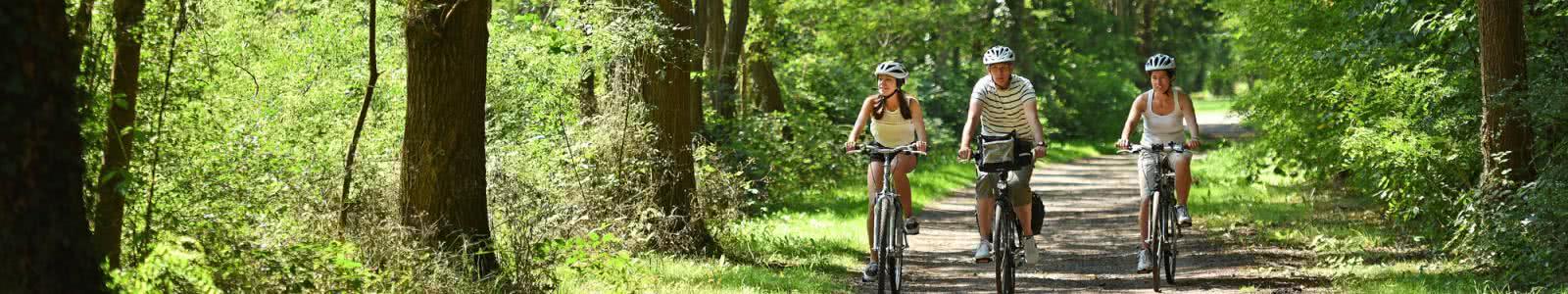 Vacances à vélo - itinéraire cyclable - Randonnée et balade à vélo en Sologne - Vacances à vélo en Loir-et-Cher Val de Loire ©J.Damase ADT41