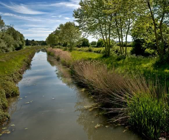Canal de Mennetou-sur-Cher - Randonnée pédestre en Loir-et-Cher Val de Loire ©Laurent-Alvarez-Conseil-Departemental41