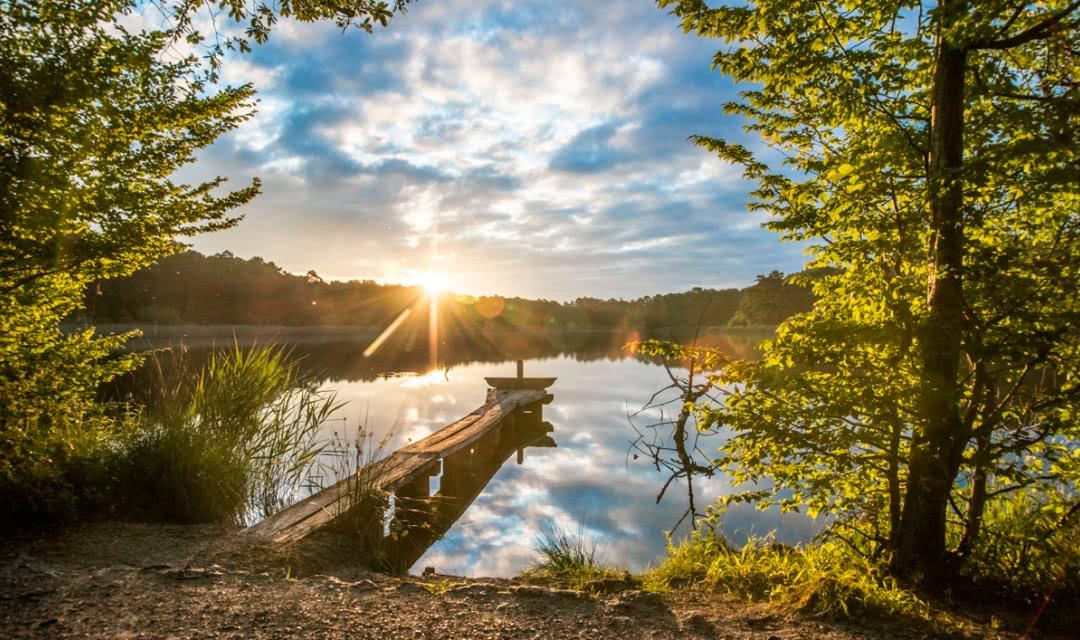 Etang de Montperché à Neuvy - Vacances nature en Sologne - Loir-et-Cher ©Mir-Photos-ADT41