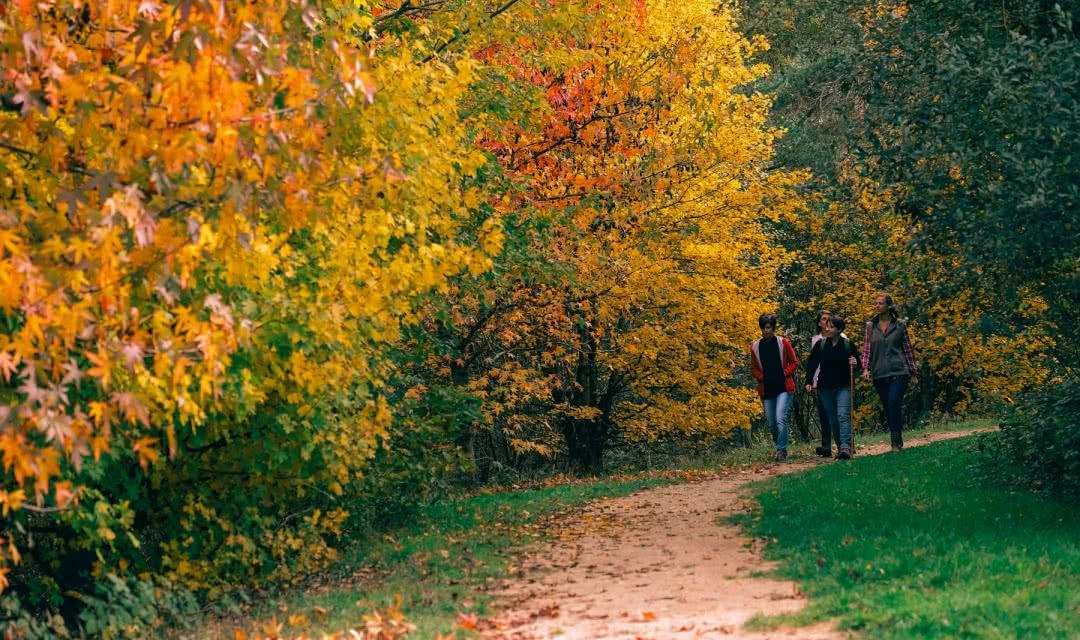 Randonnée autour du château de Chambord - Vacances nature en Loir-et-Cher Val de Loire ©David-Templier-ADT41