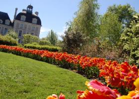 Le jardin de tulipes au château de Cheverny ©S-Clamens