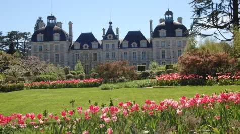 Château de Cheverny - Jardins de tulipes - Vacances en Loir-et-Cher Val de Loire ©S.Clamens
