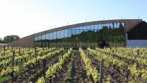 Terra Laura estate - Laura Semeriav- Le Domaine de Montcy - Les vins au féminin du Loir-et-Cher en Val de Loire ©Domaine de Montcy