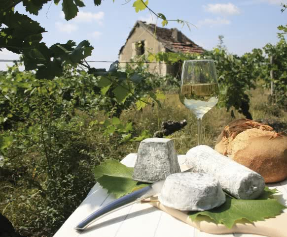 Loge de vigne et fromage en Loir-et-Cher Val de Loire - Vigne, Vin, Rando ©Enola-Creation-ADT41
