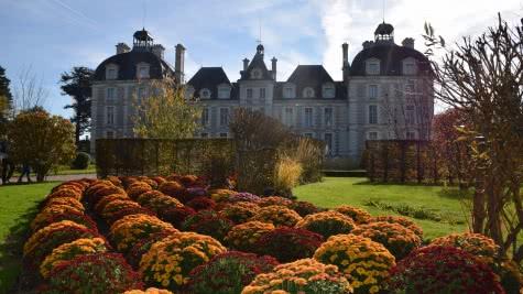Château de Cheverny en Loir-et-Cher Val de Loire - Fête de l'automne chrysanthemes ©Château de Cheverny