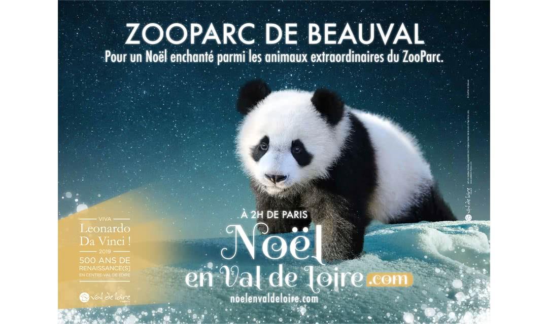 Provoyage - Campagne Noël en Val de Loire et Loir-et-Cher - Le ZooParc de Beauval