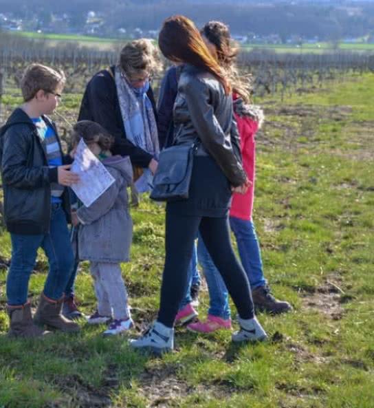 Chasse au trésor au Domaine Sauvette de Monthou-sur-Cher - Vin biologique du Val de Loire - Vacances en famille en Loir-et-Cher