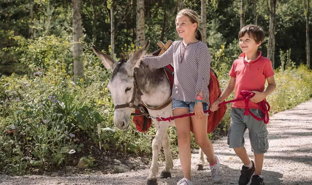Les ânes de Madame - Contes et énigmes avec Ah Non l'ânon - Vacances insolites en Loir-et-Cher Val de Loire ©Les ânes de Madame