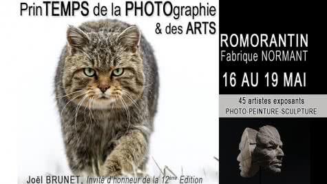 Printemps de la photographie et des arts à Romorantin capitale de la Sologne - Evénements en Loir-et-Cher Val de Loire