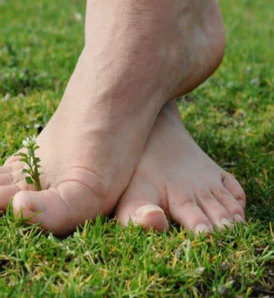 Loisirs Loire Valley - sentier pieds nus