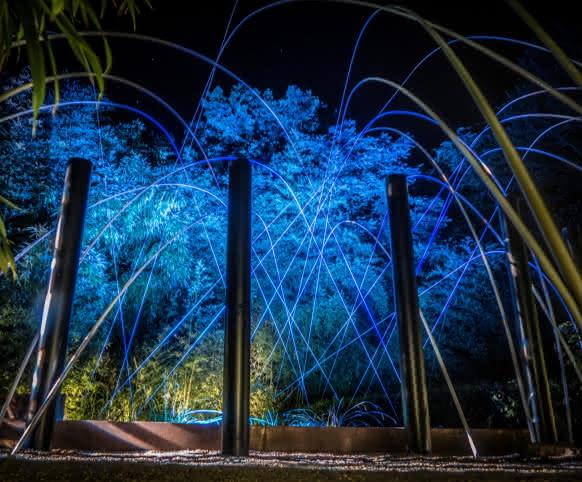 Jardins de lumières au Festival international des Jardins de Chaumont-sur-Loire ©Studio-Mir-ADT41