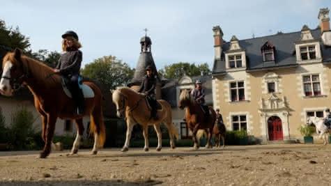 equitation-d-templier-12-770x550