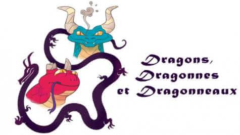 Stage Dragons Maison de la BD de Blois