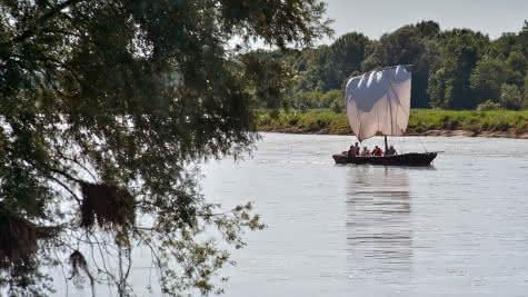 Balade en bateau sur la Loire -