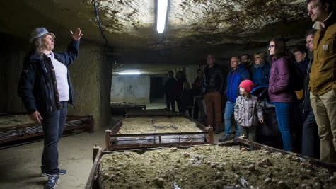 Cave des Roches - La Ferme préférée des Français
