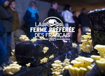 Cave des Roches en Loir et Cher - La Ferme préférée des Français
