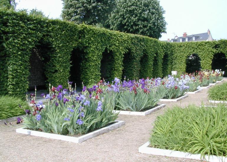 (203)jardin-simples-blois