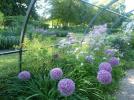(206)detail-jardin-agrement-chateau-de-cheverny