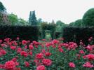 Jardins de l'évéché - Autour du château de Blois