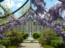 chateau-cheverny©C