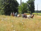 (3)balade-equestre-attelage-plaisir-feings