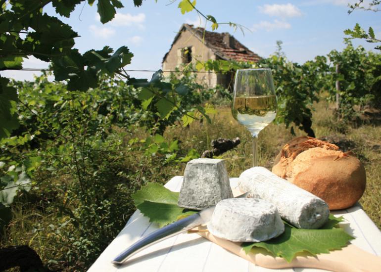 (3)loge-de-vigne-et-fromage