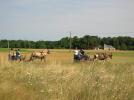 (4)balade-equestre-attelage-plaisir-feings