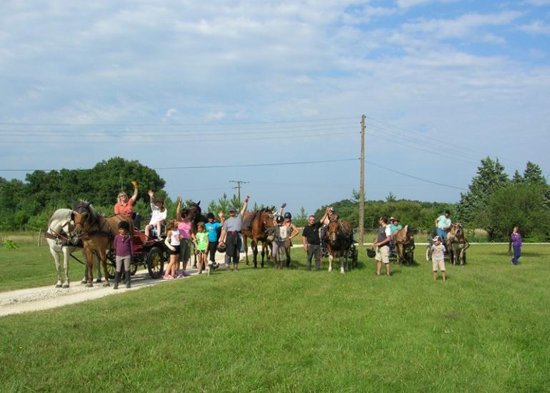 (5)balade-equestre-attelage-plaisir-feings