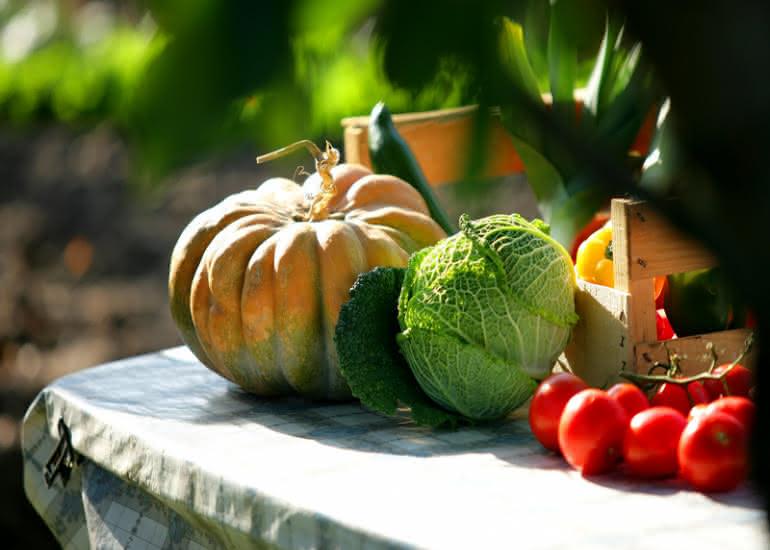 fete-de-la-soupe-legumes©CDT41-phovoir-image