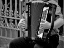 accordeon-musique-loir-et-cher
