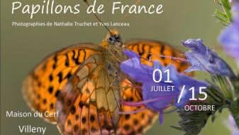 affiche-papillon-melitee-maison-du-cerf