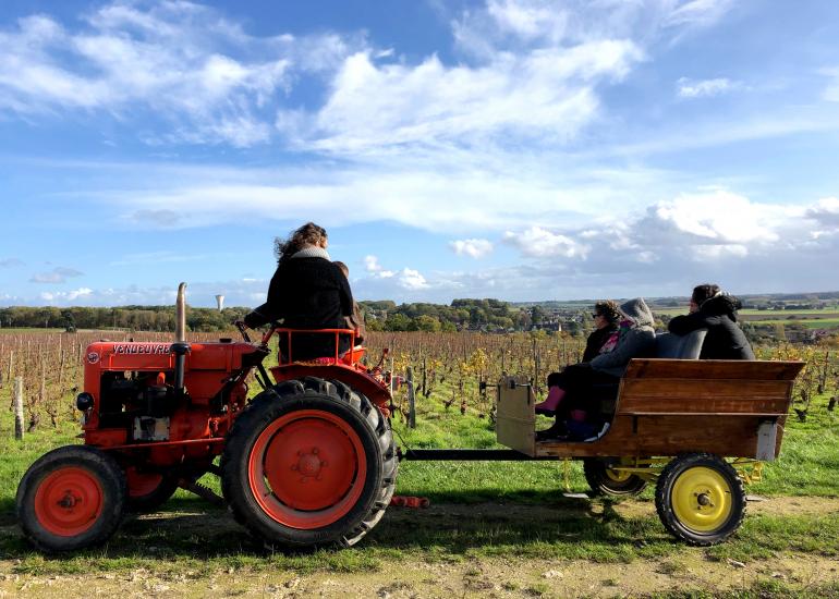 Balade en tracteur dans les vignes-Domaine C. Jumert