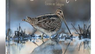 Exposition : «Becassines des marais : Escale en Sologne»