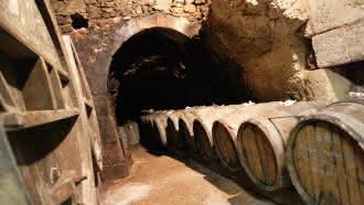 Vignoble Patrice Colin – Domaine de la Gaudetterie