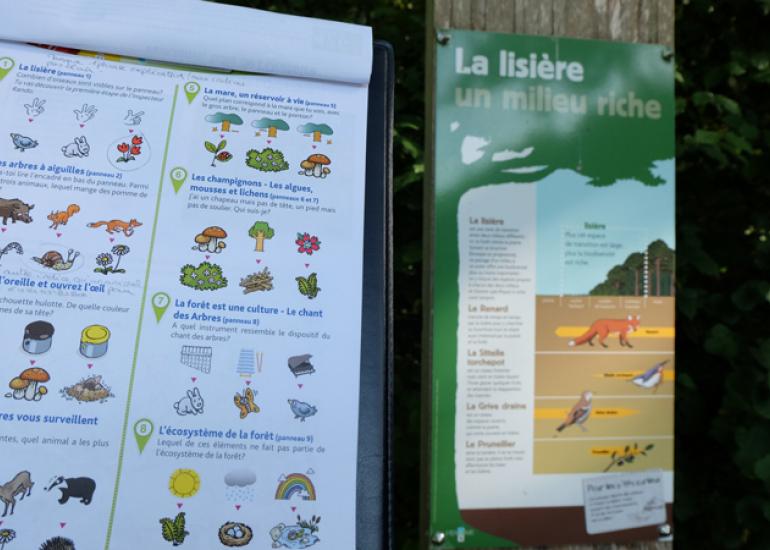 Circuit-Randoland-Bois-de-l'Oratoire-Vendome(2)