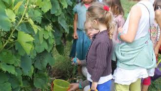 Les ateliers du Vigneron