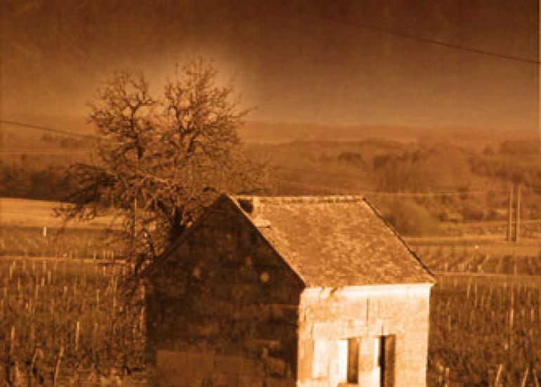 Domaine-Desloges-Monthou-sur-Cher©Domaine-Desloges