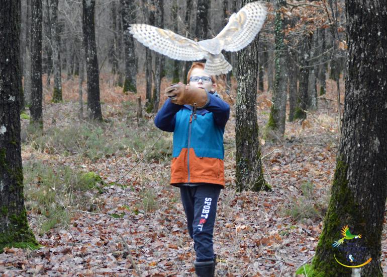 Initiation à la fauconnerie - Enfants