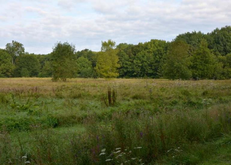 tourisme-sologne-site naturel-villeherviers-le baltan1