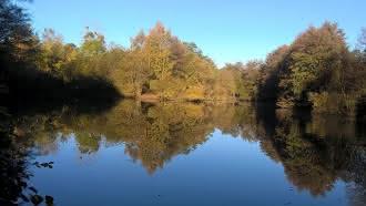 Pêche sur les étangs de Beaulieu