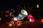 Festival-des-lumieres-Chateau-Selles-sur-Cher-Studio-Mir-ADT41--19-