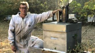 Les ruchers de Saint-Marc