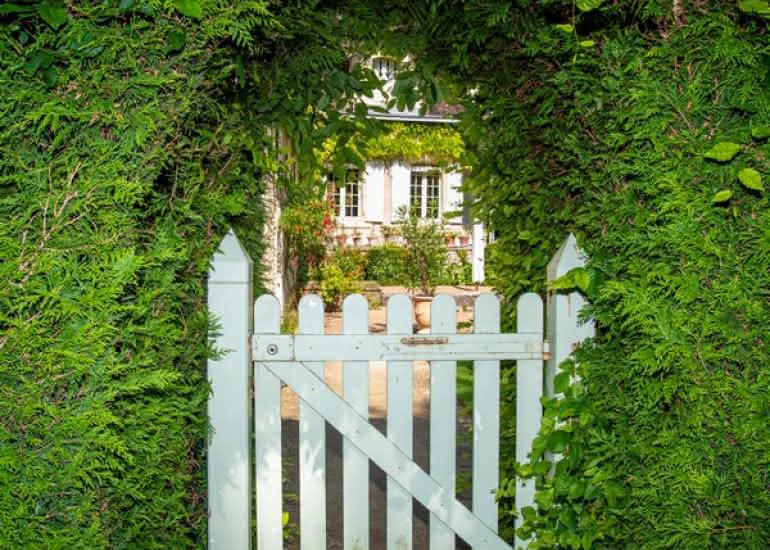 Invitation-au-jardin-du-plessis-sasnieres