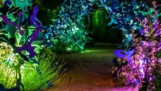 Les Jardins de Lumière